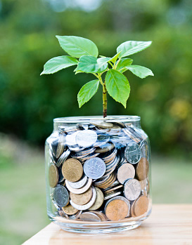 Financial Support - Jar of coins and growing plant